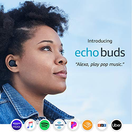introducing echo buds picture 001 - Introducing Echo Buds -